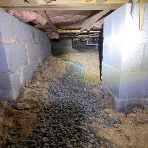 elite pest solutions drain system